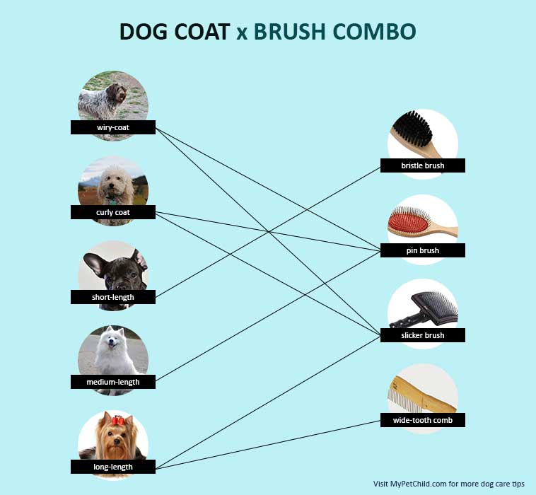 Dog Coat & Brush Combo