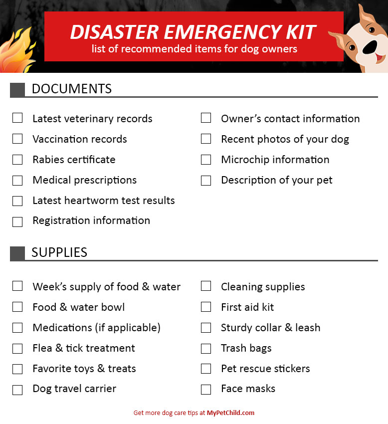 Dog Disaster Emergency Kit