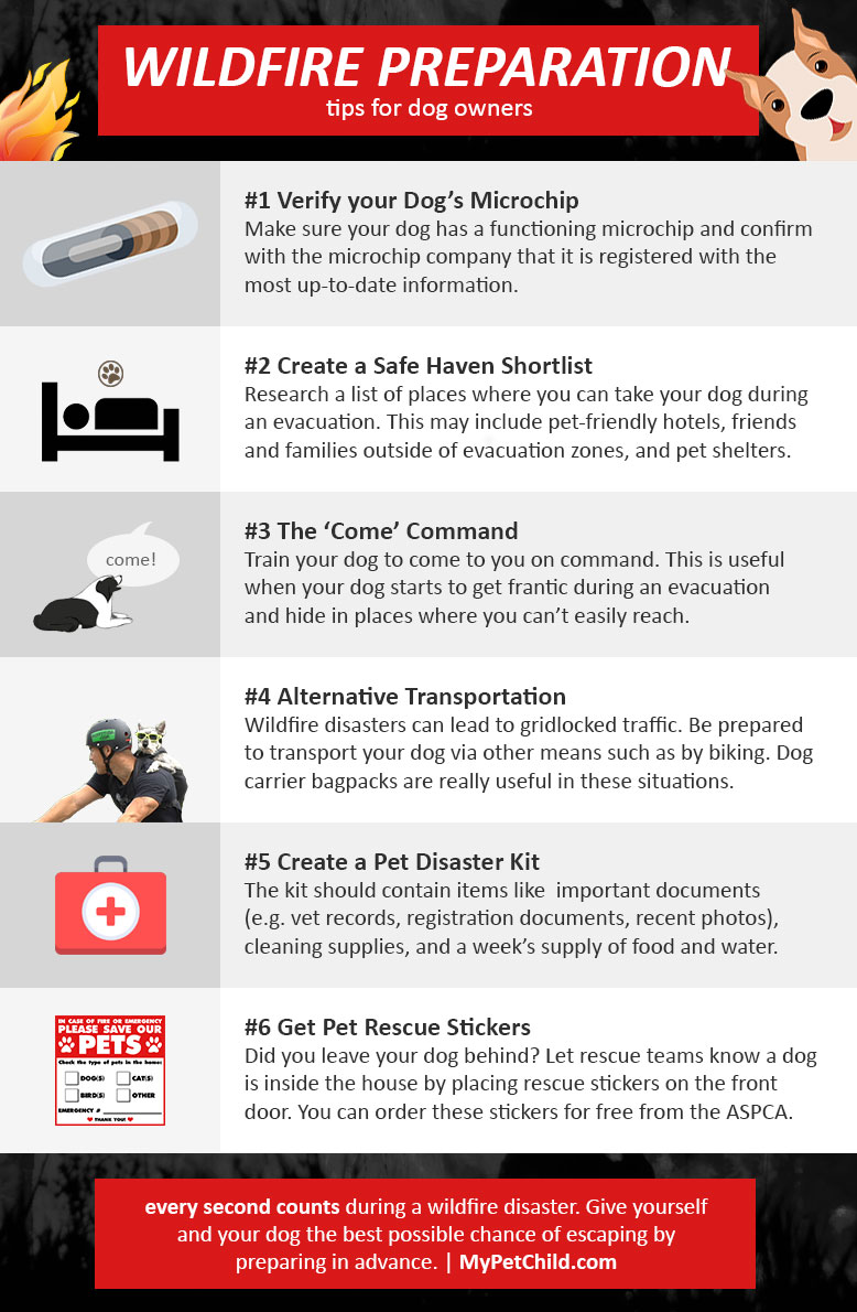 How to Prepare & Evacuate Your Dog from a Wildfire [Infographic]