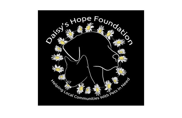 daisys hope foundation