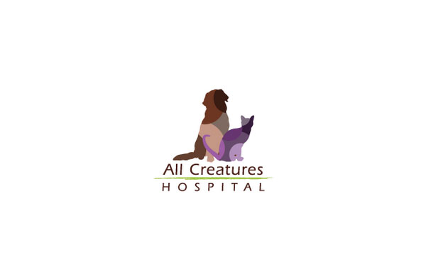 all creatures hospital