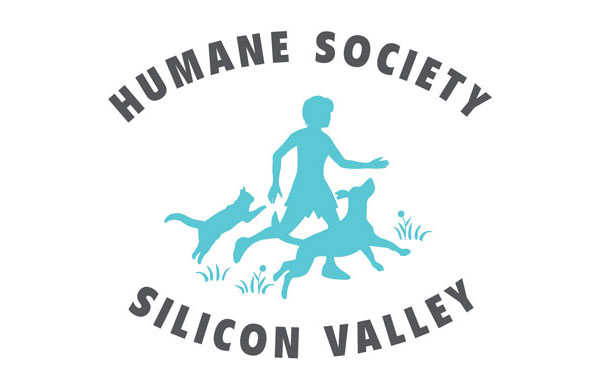 humane society silicon valley 1